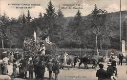 CPA Concours Central Agricole De GAP 1913 - Cavalcade Du 8 Juin - Char De BACCHUS - Gap