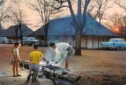 "07934 ""REPUBLIEK VAN SUID AFRIKA - KAMP, KRUGERWILDTUIN""  ANIMATA, CAMPING. AUTO ANNI '50 CART. ORIG. NON SPED. - Sud Africa"