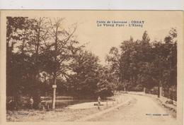 CPA-91-Essonne- ORSAY- Le Vieux Parc- L'Etang- - Orsay