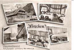 Deutschland - Bade-Wurtemberg - Hirschen - Allemagne