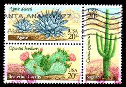 USA. N°1369-71 De 1981 Oblitérés. Cactus. - Sukkulenten