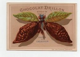 CHROMO Chocolat Drillon Usine Du Marais Paris Testu Et Massin Fruit Du Cacaoyer En Forme De Papillon - Chocolate