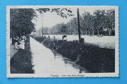 Cartolina Treviso - Viale Fuori Porta Mazzini - 1910 Ca. - Treviso