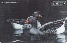 AND-063 TARJETA DE ANDORRA DE UNOS PATOS (PAJARO-BIRD) - Andorra