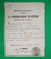 D-IT R. Lombardo Veneto 1860 Padova - Patente Per Vendita Liquori - Documents Historiques