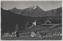 Hannigalp Ob Grächen, Rinderhorn, Alteis, Balmhorn - Photo: E. Gyger No. 1637 - VS Valais
