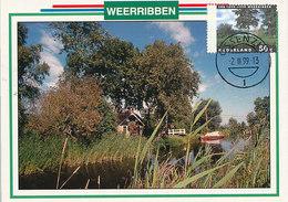 D34391 CARTE MAXIMUM CARD FD 1999 NETHERLANDS - TREES NATIONAL PARK WEERRIBBEN - PROVINCE OVERIJSSEL CP ORIGINAL - Arbres