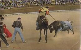 AO25 Bull Fighting - Picando - Corrida