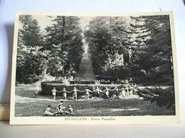 1958 - Firenze - Vaglia - Bivigliano - Parco Pozzolini - Animata Cartolina D'epoca Originale - Firenze (Florence)