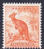 Australia ASC 197 1937-49 King George VI, Half Penny Kangaroo, Perf 14 X 15, Mint Never Hinged - Mint Stamps