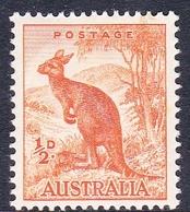 Australia ASC 203 1937-49 King George VI, Half Penny Kangaroo, No Watermark, Mint Never Hinged - Mint Stamps