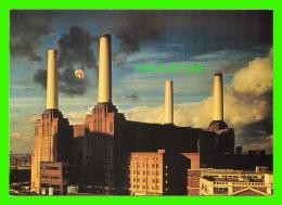 "PIG - COCHON - ANIMALS CD BOXED SET "" SHINE ON "" 1992 PINK FLOYD - - Cochons"