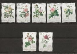 Roses De Redouté - Belgique
