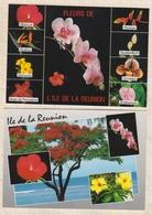 8AK1444 ILE DE LA REUNION  Lot 2 Cartes FLEURS 2 SCANS - La Réunion