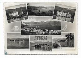 STRESA - VEDUTE - VIAGGIATA FG - Verbania