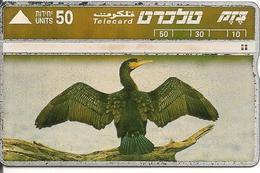 CARTE-HOLOGRAPHIQUE-ISRAEL-CORMORANT NOIR-B E- - Uccelli