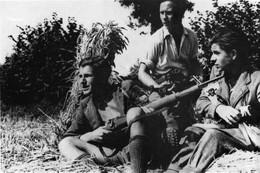 WW2 - Résistants Français Dans Le Maquis - 1939-45