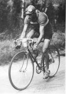 - CYCLISME -  Gino BARTALI  -19789- - Cyclisme