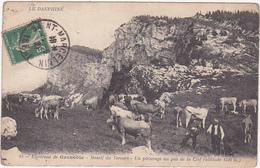 38 - Environs De Grenoble - Massif Du Vercors - Un Pâturage Au Pas De La Clef / Personnages, Vaches / 1921 - Non Classés