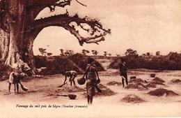 MAURITANIE - VANNAGE DU MIL PRES DE SEGOU - SOUDAN FRANCAIS - Mauritanie