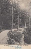 LINKEBEEK / VALLEE DES ARTISTES  1903 - Linkebeek