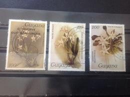 Guyana - Complete Set Orchideeën 1988 - Guyana (1966-...)