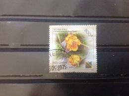 Vietnam - Bloemen (800) 2003 - Vietnam