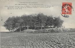 15, Cantal, MONTSALVY, Puy De L'Arbre, Scan Recto-verso - Altri Comuni