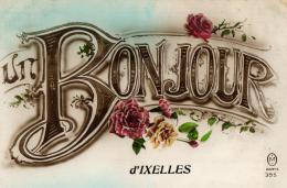 BELGIQUE - BRUXELLES - IXELLES - ELSENE - Un Bonjour D'Ixelles - Ixelles - Elsene