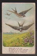 General Greetings - Birds & Flowers - Used 910 - Stamp Missing - Postcards