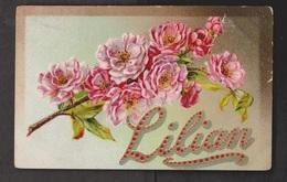 General Greetings - Embossed Flowers Personalized - Used C1910 - Stamp Missing - Firstnames