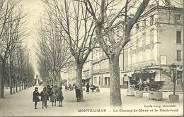 MONTELIMAR...le Champs De Mars Et Le Boulevard...animée..1925 ??...14 X 9 - Montelimar