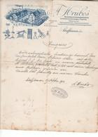 2499  SCHAFFHAUSEN 1910 - Switzerland