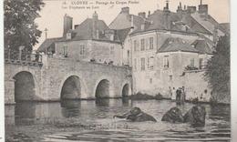 CLOYES : Passage Du Cirque PINDER - Les éléphants Au Loir. (rare Thème Du Cirque). - Cloyes-sur-le-Loir