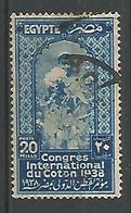 Congrés International Du Coton 20m Blue - Egypt