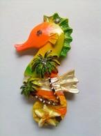 Seahorse - Animals & Fauna