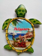 Turtle - Animals & Fauna