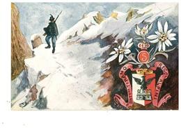 ALPINO - ALPINI 5° BATTAGLIONE TIRANO - Regiments