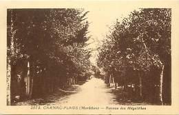 - Morbihan -ref-D621- Carnac - Avenue Des Megalithes - Edit. Riviere Bureau - Pons - N° 2972 - Carte Bon Etat - - Carnac