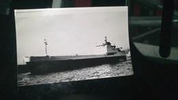 """Photo De Bateau -   """"  MONTE CINTO """" - Boats"""