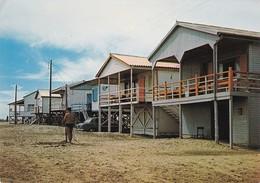GRUISSAN PLAGE - CABANONS 403 - Autres Communes