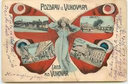CROATIE - Pozdrav Iz Vukovara (vendu En L'état) - Papillon - Croatia