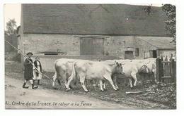 Agriculture - Scenes Champetres Du Centre De La France -  Le Retour A La Ferme ( Ferme , Paysan - Fermes