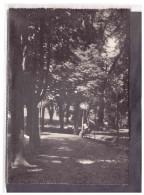 15370   -   CASTIGLIONE TORINESE, Istituto Figlie Della Sapienza      /   Viaggiata - Altre Città