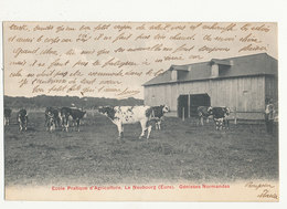 27 LE NEUBOURG ECOLE PRATIQUE D AGRICULTURE GENISSES NORMANDES CPA BON ETAT - Viehzucht