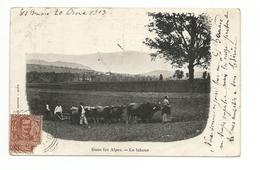 Cpa-dans Les Alpes-le Labou - France