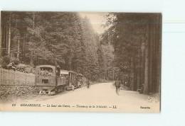 GERARDMER - Le Saut Des Cuves - Tramway De La Schlucht Avec Beau Plan Animé - 2 Scans - Gerardmer