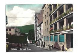 CARTOLINA DI VELLETRI  - 1 - Velletri