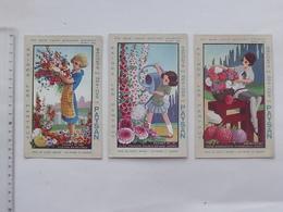 GRAINES LE PAYSAN: Carte Postale Publicitaire Ancienne Lot 3 Différentes Même Série - Culture Bouquet Fleur Arrosoir - Publicité