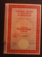 1 Cie Agricole Madagascar (Annulé) - Aandelen
